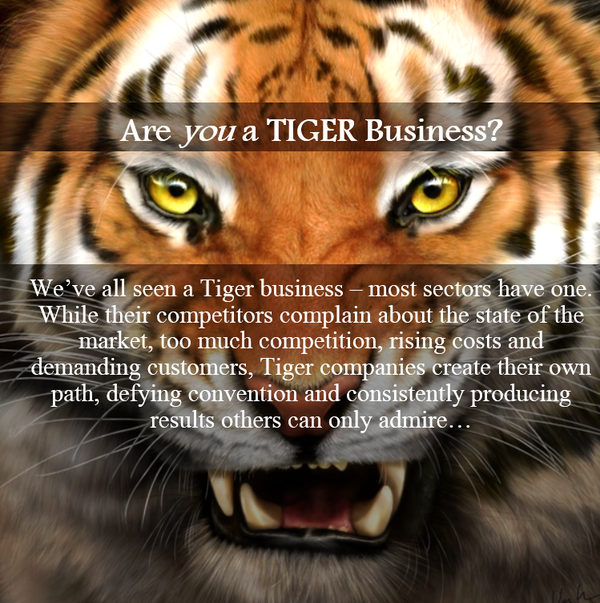 Tiger Business