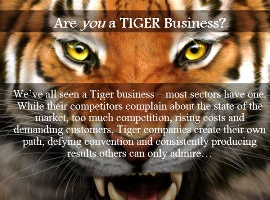 Tiger Businesses