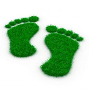 Green footprints illustrating carbon footprint